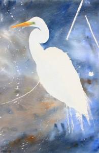 A beak, an eye, and a little color