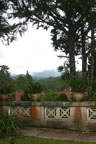 The mountain view from the guesthouse porch, Tanah Rata