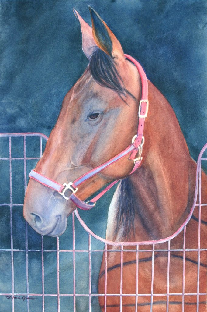 Unknow Champion watercolor StefanieGraves